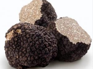 truffel-eco